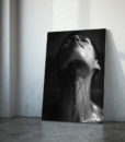 Black Veil | 2013